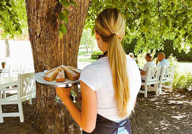 servitris under stort träd