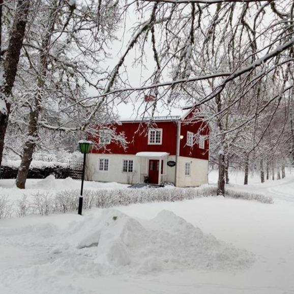 Vinterbild med butiken och mycket snö