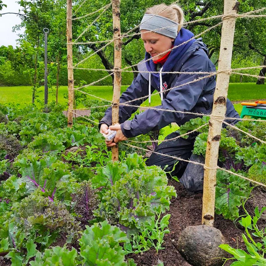 Flicka i trädgårdsarbete