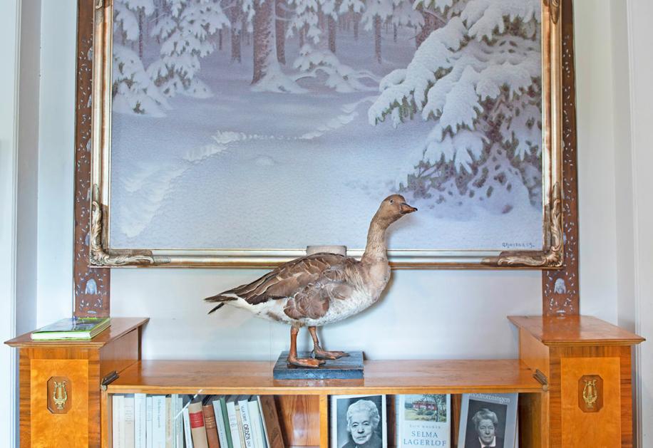 Interiör med uppstoppad fågel
