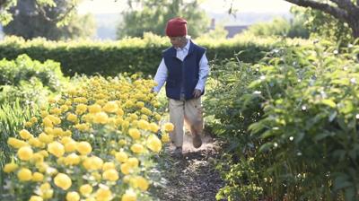 Nils Holgersson bland blommor