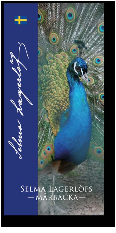 Folder framsida med påfågel